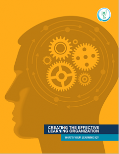 Effective Learning Organization Cover_Small