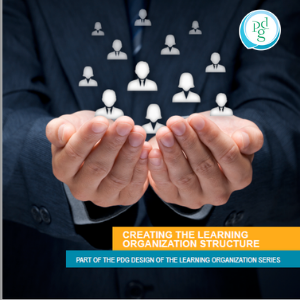 Creating the learning organization structure